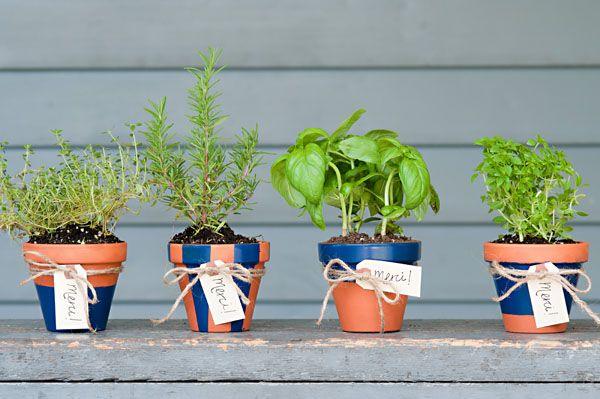 Kruidenplantjes in plaats van bloemstukken