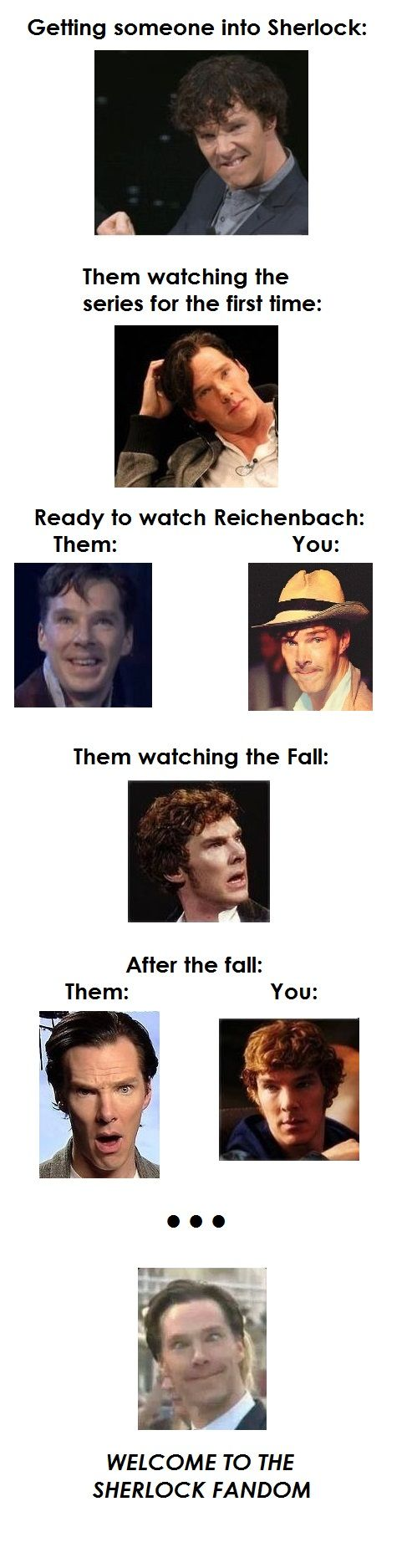Melinda - The Sherlock fandom as told by Benedict Cumberbatch...this is so accurate.