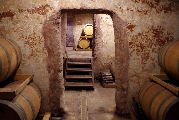 Negroamaro und Primitivo aus dem Salento: Zu Besuch in der Winzergenossenschaft von San Donaci in der Provinz Brindisi.