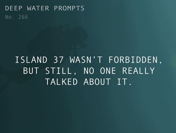 Island 37 wasn't forbidden, but still, no one really talked about it.