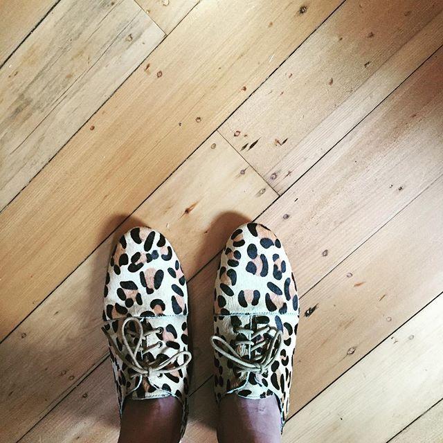 Radical! Yes! 😻#radicalyes #leopardprintshoes #hastenslowly #pngaussie #iphonephotography #baimikisim