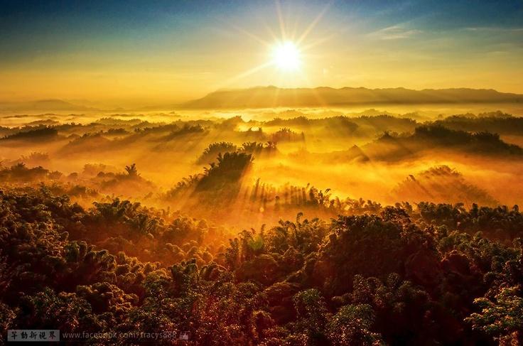我心向太陽!  photography by : 劉芊芊