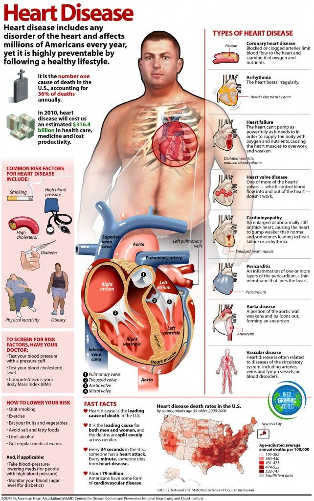 Here's an infographic for those who want to know more about heart disease and effective ways to avoid it: