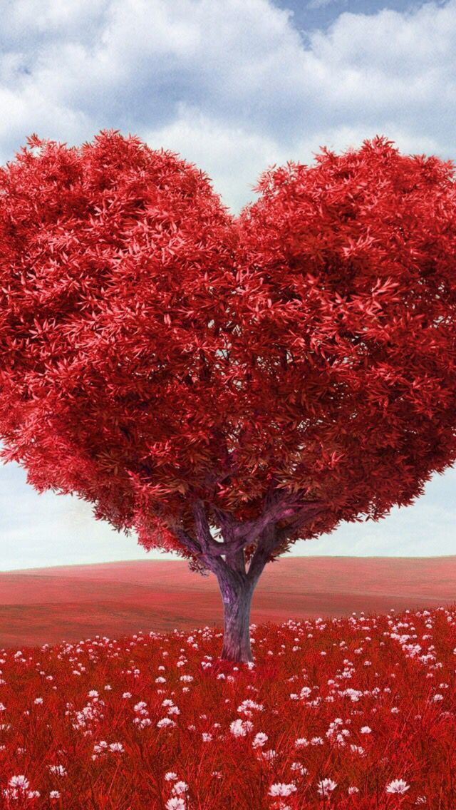 #Heart #Red