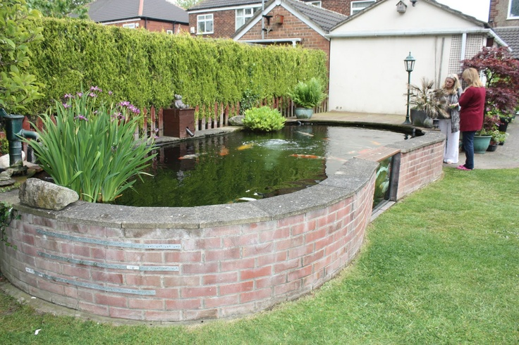 Fish pond with glass view water feature pinterest Raised ponds for sale