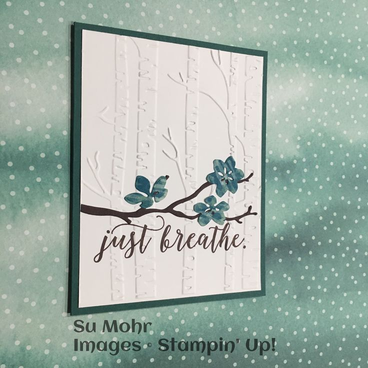http://www.stampinup.net/esuite/home/sumohr/project/viewProject.soa?id=592639