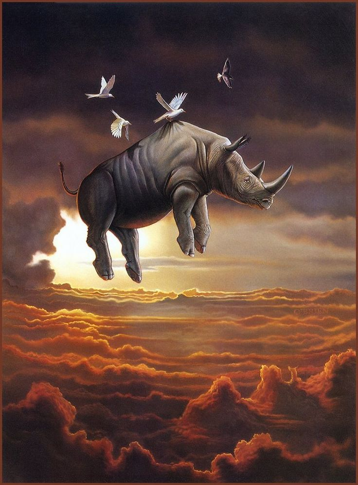 Keep those impossible dreams. Nothing is impossible [LRS Animals In Art] Tim O'Brien, A Little Help