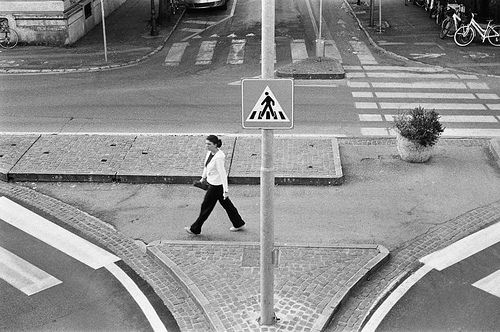 Strisce #street #treviso #leica #photography #walking