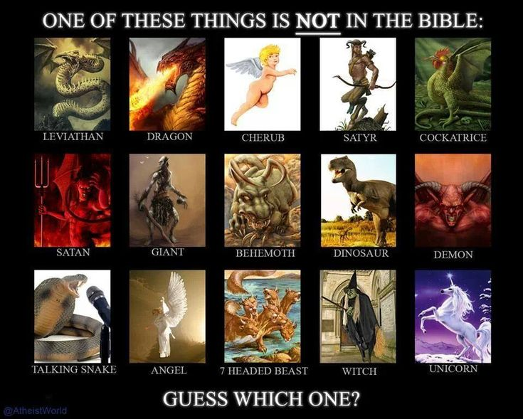 One of these things is not in the Bible.  Which one?  (Hint - it's the only real thing in the list!)