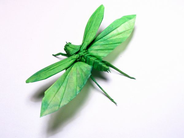 amazingly intricate origamiOrigami Bugs, Origami Paper, Brian Channing, Paper Art, Origami Insects, Paper Sculpture, Dragons Fly, Origami Art, Amazing Origami