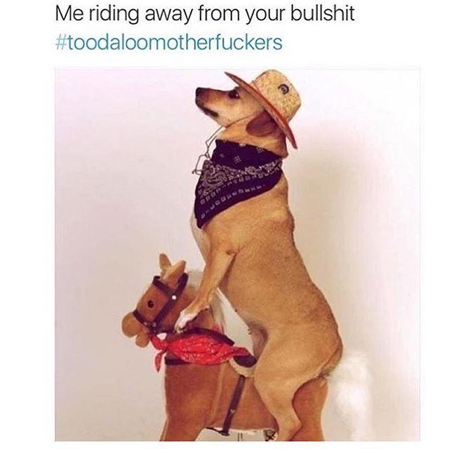 Thick thighs, thin patience. I ain't got no time for your bullshit. #Toodaloo #MotherFuckingFuckBoyz ✌️