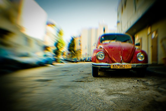 red Beetle photographic print  $10.20