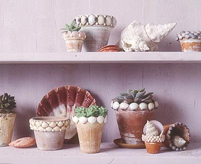 Macetas decoradas con conchas marinas