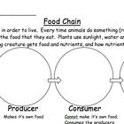 25  best ideas about food chain diagram on pinterest