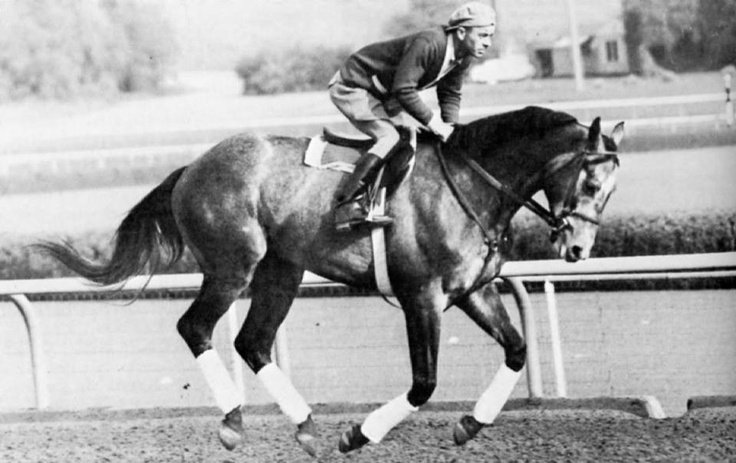 Native Dancer, nicknamed the Grey Ghost, was one of the most celebrated and accomplished racehorses in history and was the first horse made famous through the medium of television. As a two-year-old, he was undefeated in his nine starts for earnings of $230,495, a record for a two-year-old. During his three years of racing, he won 21 of 22 starts.