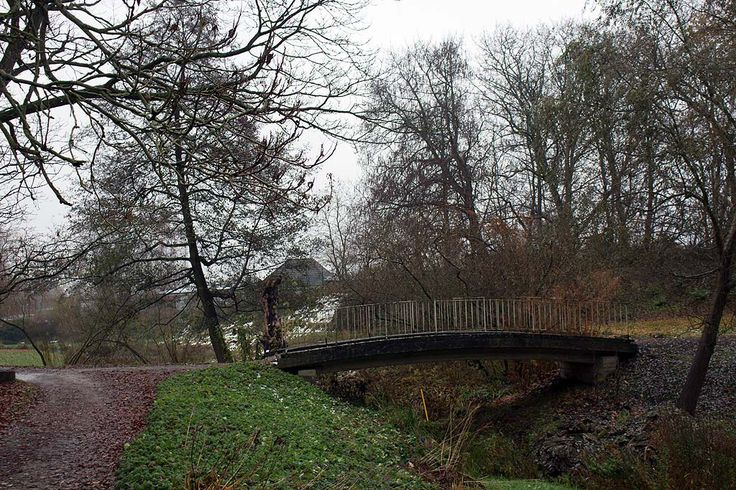 Frühlingstraum im Novembergrau beim Besuch des Botanischen Gartens Rostock   Brücke im herbstlichen Botanischen Garten Rostocks (c) FRank Koebsch