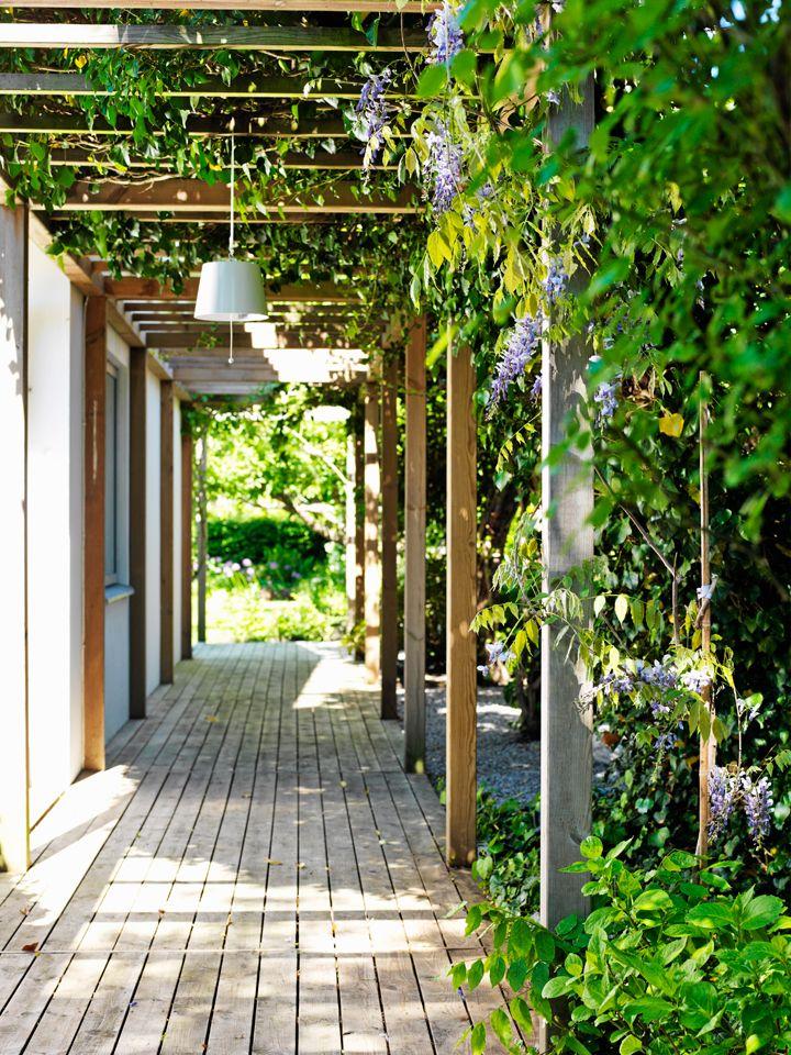 78 best Narrow space, Side yard images on Pinterest on Side Yard Pergola Ideas id=20046