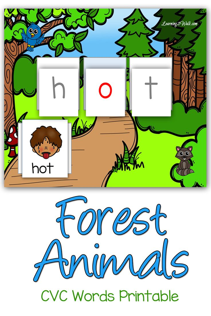 Bottle Brush Woodland Animals - Forest animals cvc words printable