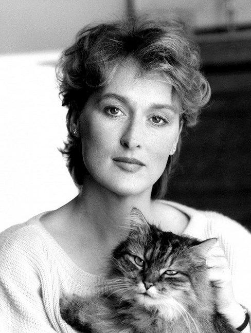 The post adoration Meryl Streep