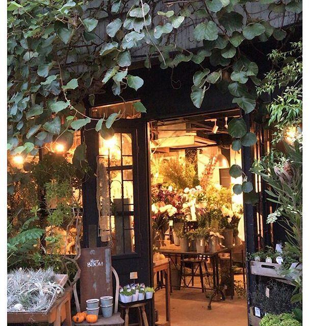 【ohana_natural_garden】さんのInstagramをピンしています。 《✲*゚ 二条城近くにあるお花屋さん☺︎ 「ブルーミストボーン」さん。 1Fは生花やドライフラワー 2Fは鉢物や大きな水槽の テラリウムなどが沢山ある 「cotoha」さん。 名古屋でも行きたかった 「プーコニュ」さん 「フラワーノリタケ」さんに 行けて感激でした( *ˊᵕˋ) 3件ともお店の雰囲気が とても似てました。 素敵なお店を訪問すると すごく刺激を受けます。 いい勉強になりました✨ * * #京都花屋さん #ブルーミストボーン #cotoha #ドライフラワー #テラリウム #花のある暮らし #instagram #instaphoto》