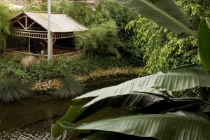 Emsflower Erlebnispark - Tropengarten