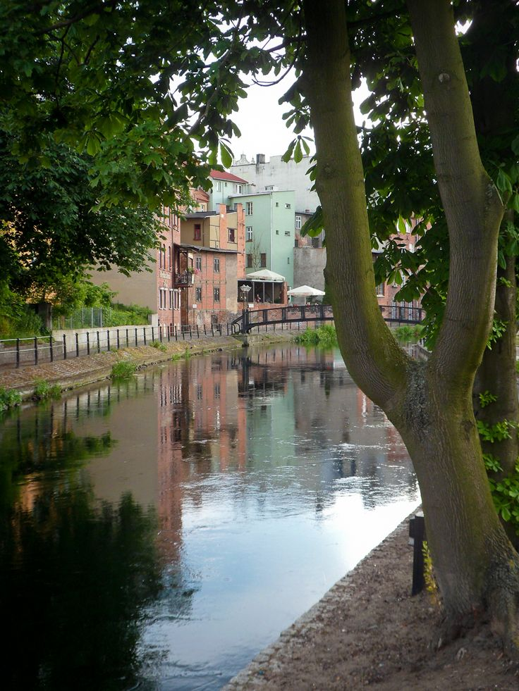 The Mill Island, Bydgoszcz, Poland. Bromberg, Prussia (Germany), now Bydgoszcz, Poland. That's where our family story begins!