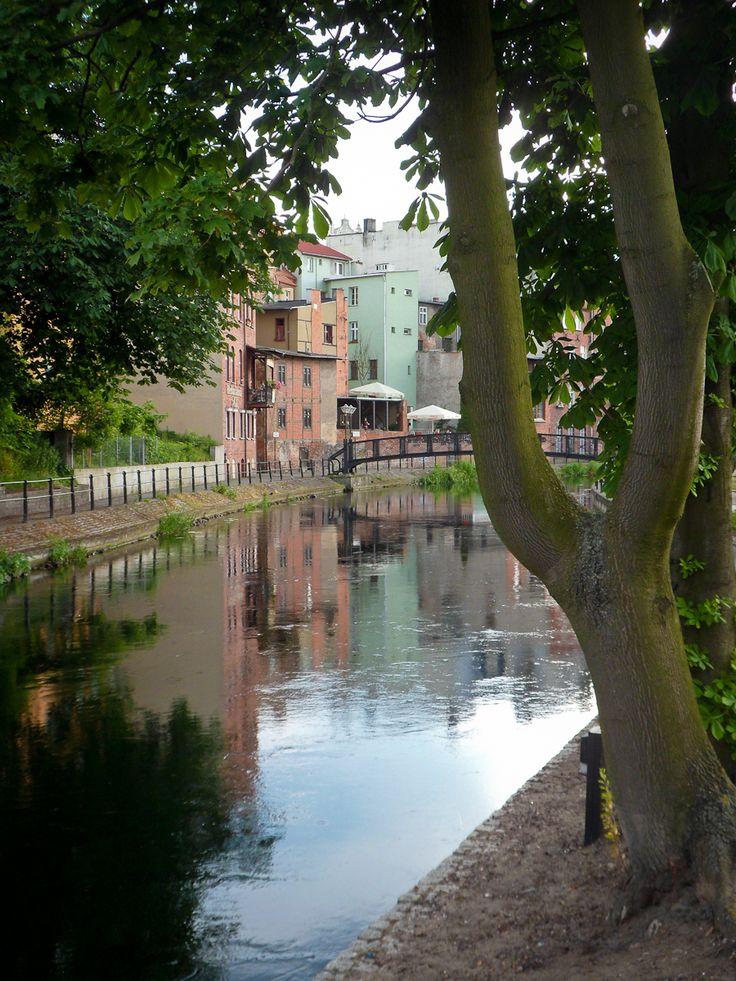 The Mill Island, Bydgoszcz, Poland. Bromberg, Prussia (Germany), now Bydgoszcz, Poland. That's where our family story begins!