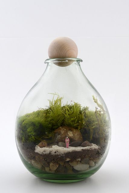 Twig Terrariums' Creations by twigterrariums, via Flickr
