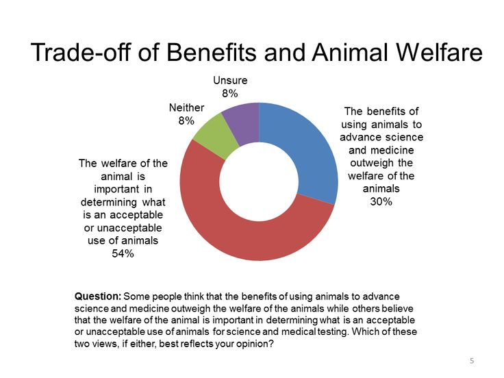 """essay on speciesism Free essay: speciesism, as defined by peter singer, """"is a prejudice or attitude of bias in favor of the interests of members of one's own species and against."""