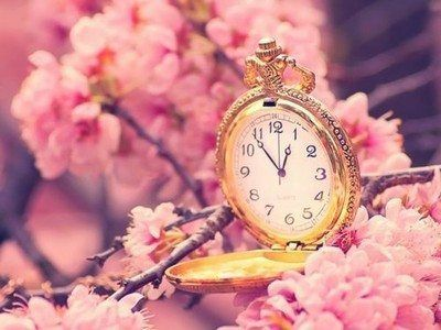 Cherry Blossom Tree With Vintage Clock OMG Love Stuff Like This
