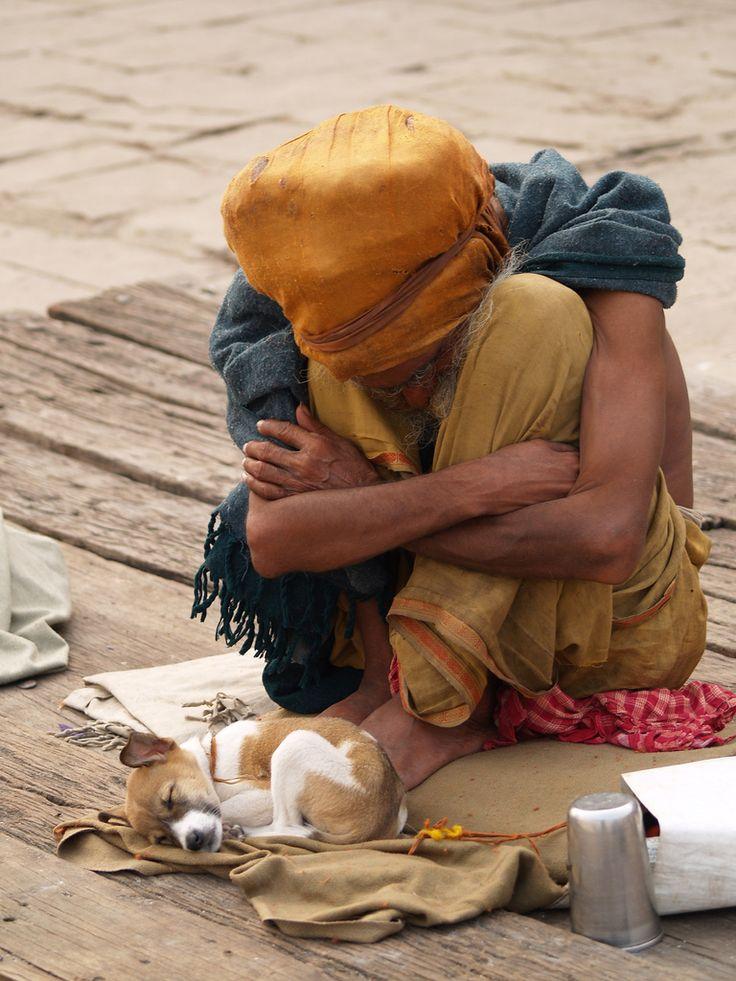 Sadhu. Varanasi. India. | Varanasi, The incredibles, Pets