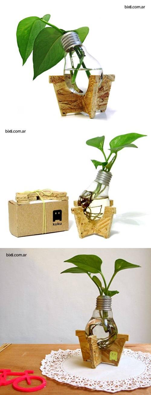 Beautiful light bulb plant idea