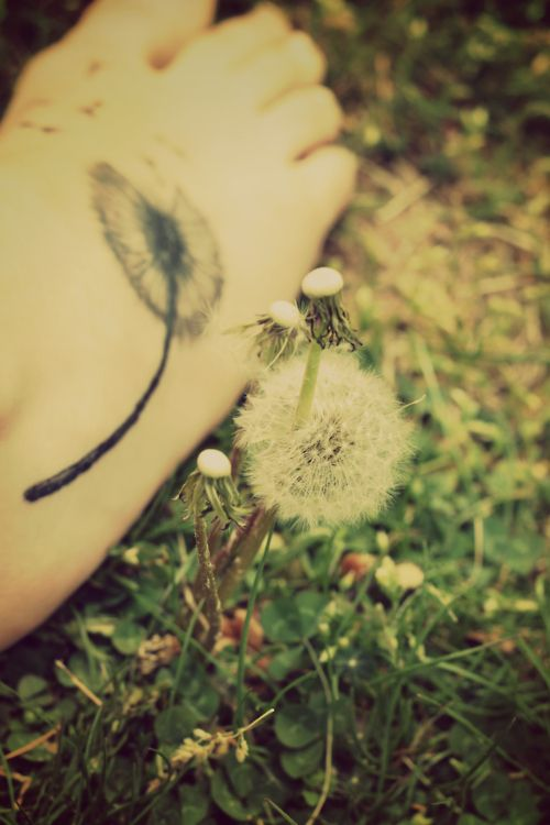 dandelion tattoo. I usually don't like feet tattoos but this one is