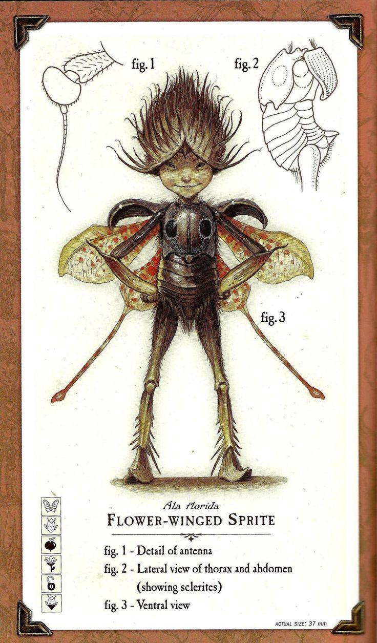 Arthur Spiderwick | Spiderwick Chronicles Wiki | FANDOM ...