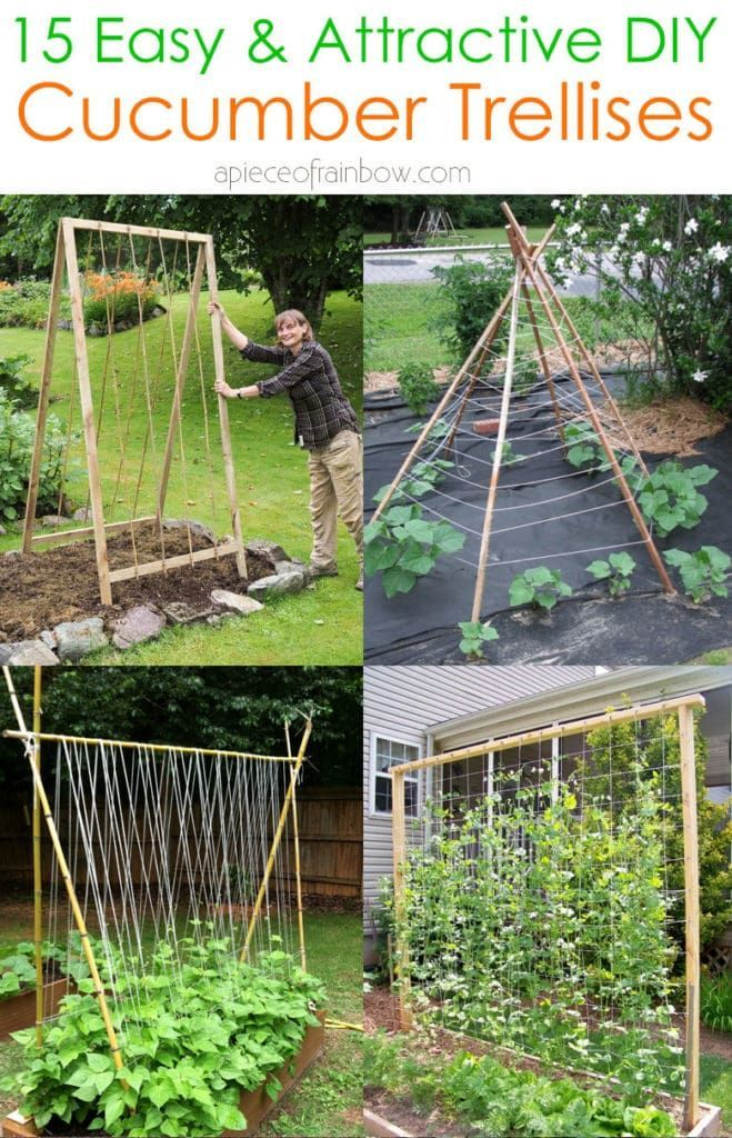 15 Easy Diy Cucumber Trellis Ideas In 2020 Vegetable Garden Trellis Cucumber Trellis Diy Garden Trellis