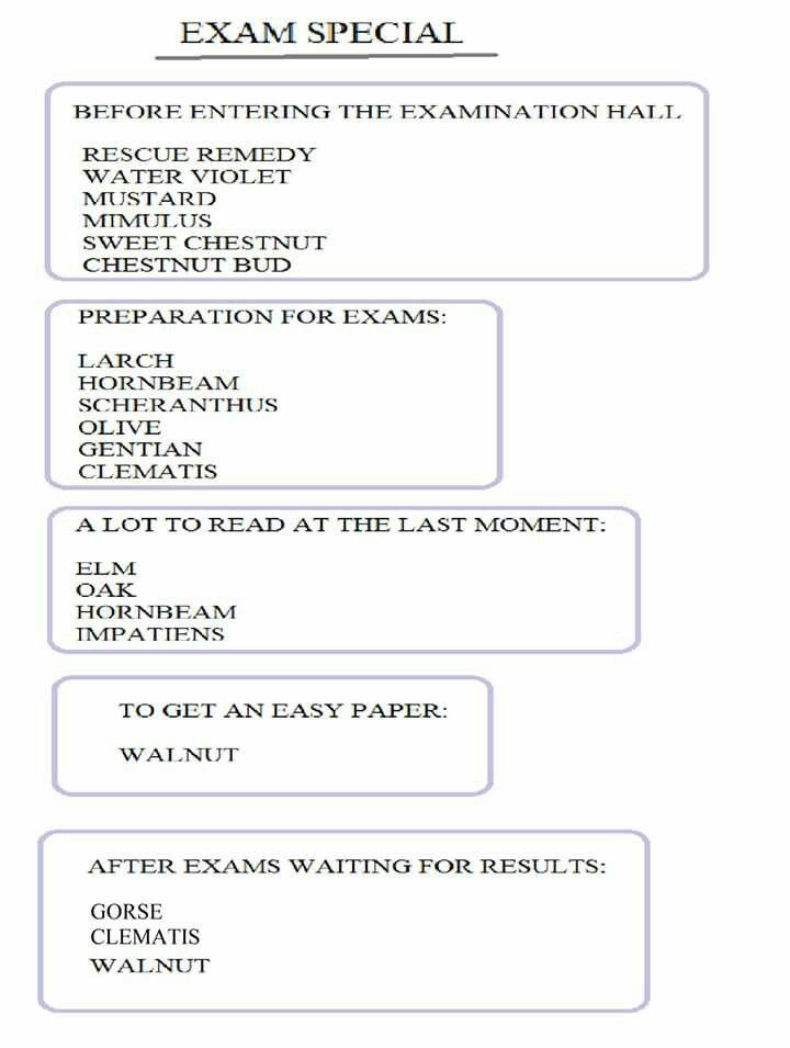 Exam Special