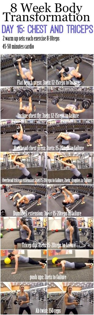 8 Week Body Transformation: Day 15 Chest and Triceps