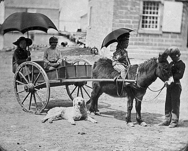 photo of Children of Lt. Montgomery C. Meigs, in donkey cart with dog, probably Mary Montgomery, Charles, Montgomery, and John Rodgers.  It was made in 1850.