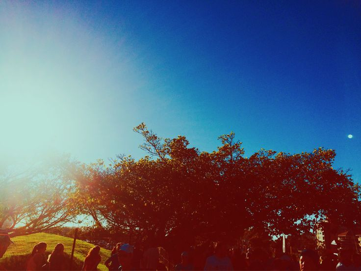Beautiful #CapeTown morning! Greenpoint @ParkRun in the bag... Bring on #Saturday! Getting ready for #summer 2016