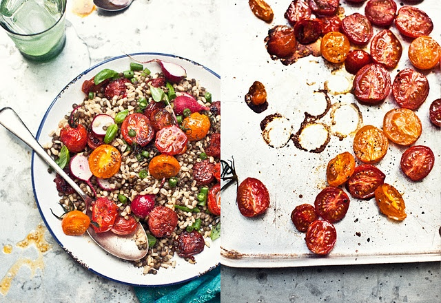 pearl barley and puy lentil salad with roasted heirloom baby tomatoes,  chorizo, green beans and baby radish