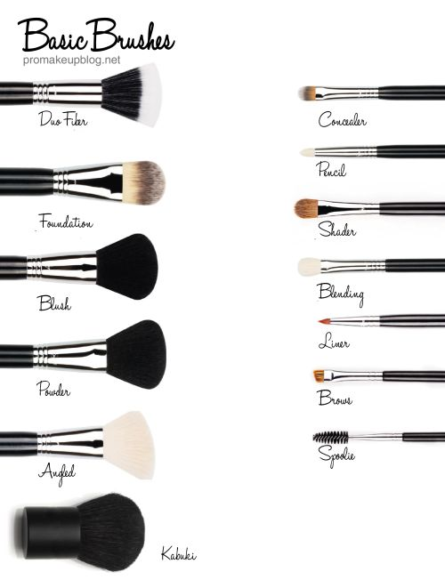 Basic Makeup Brush For Beginners - Mugeek Vidalondon