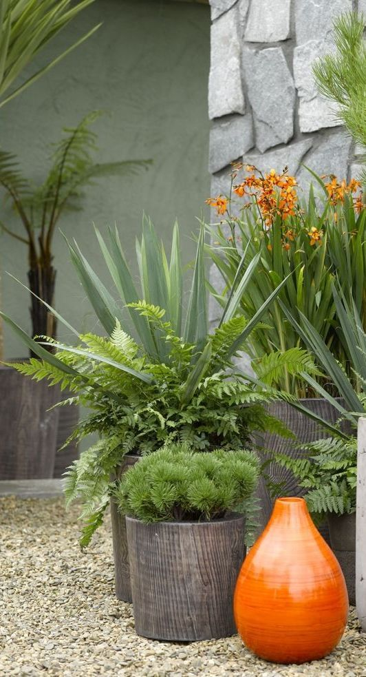 Best Garden And Outside Ideas Images On Pinterest