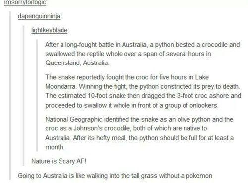 How similar the Australian wilderness is to Pokemon.