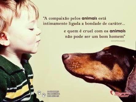 O menino que sofre e se indigne diante dos maus tratos infligidos aos animais, será bom e generoso com os homens. (Benjamim Franklin)