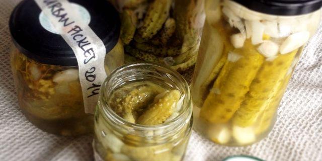 Homemade french gherkins, Cornichons /hemgjorda cornichons