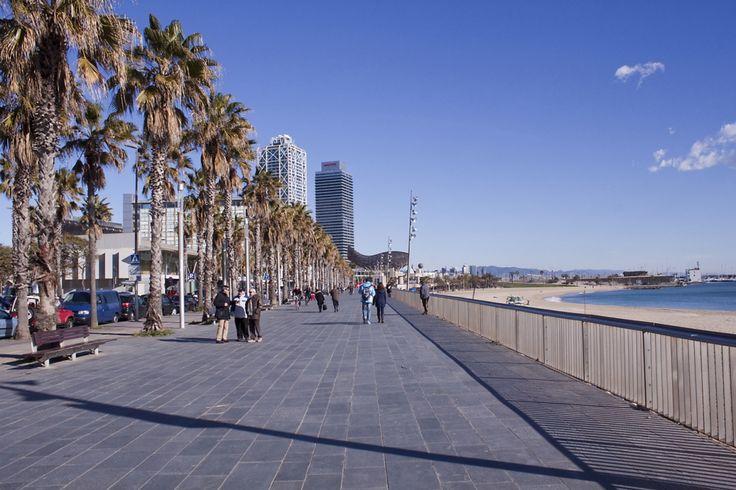 Barcelona City Tour + Boat Trip Skyline Barcelona (2 Days) (BCNHBOAT) 6