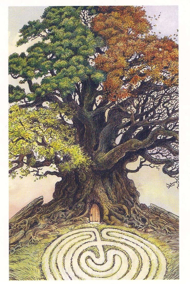 Labyrinth Maze:  A tree for all seasons, and a Faery door leading to a labyrinth.