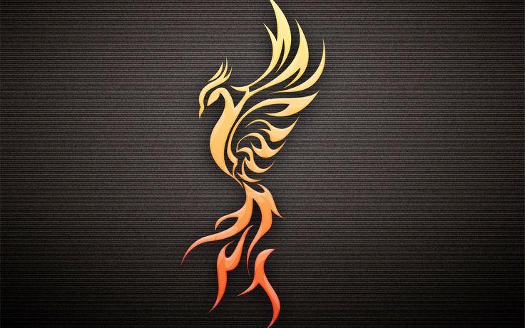 птица, феникс, тёмный фон, профиль 2560 x 1600