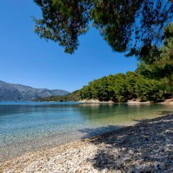 Skinos, beach with its pebbles and pine trees touching the seafront -© wondergreece.gr