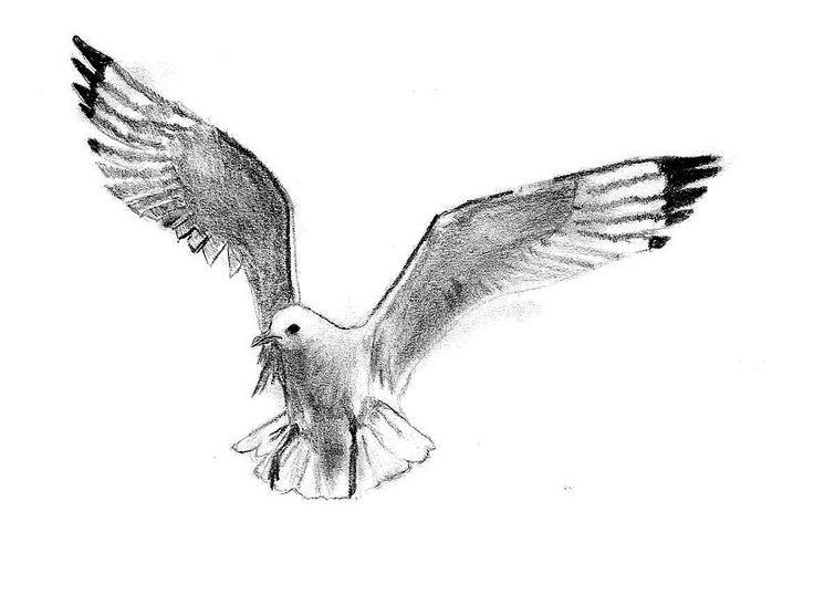 tattoo seagull - Buscar con Google